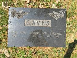 John Gaves