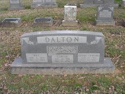 Girlue Dalton