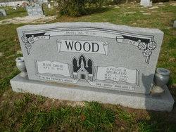 Jesse David Wood