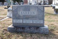 Dr John Barron