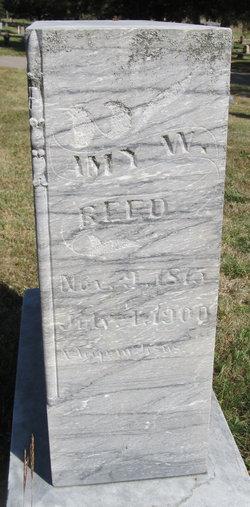 Amy W. Reed