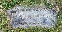 Tariq N. Wilson