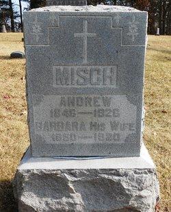 Andrew Misch