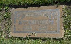 Sudie B. Hoefling