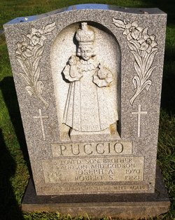 Robert S Puccio