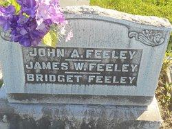 James W. Feeley