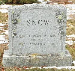 Donald P Snow