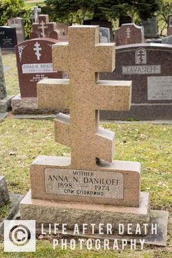 Anna N Daniloff