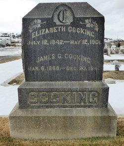 Elizabeth Cocking