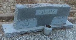 "Louisa C. ""Lou"" <I>Harris</I> Adams"
