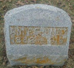 "Annette ""anna"" <I>Williams</I> Crumly"