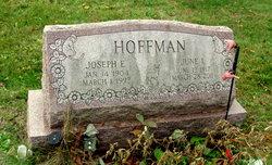 Joseph E Hoffman