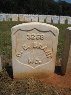Dennis B Brant