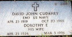 David John Cudahey