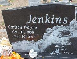 Carlton Wayne Jenkins
