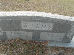 Melia F. Adams
