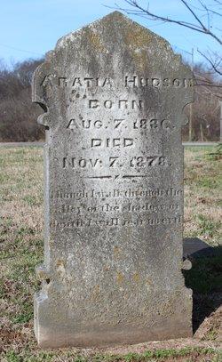 Aratia Hudson