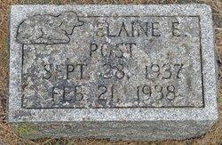 Elaine Ellen Post