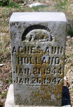 Agnes Ann Holland
