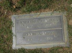 Haddie Adele <I>Stewartson</I> Briggs