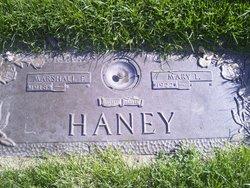Mary L <I>Lawrence</I> Haney