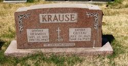Gustav Krause