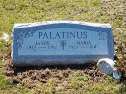 Maria Palatinus