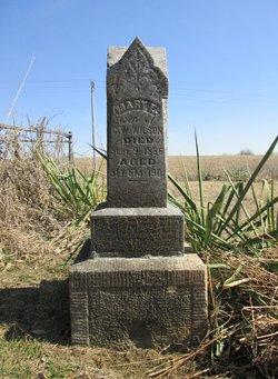 Mary Elizabeth <I>Farmer</I> Wilson