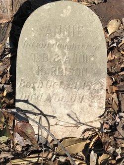 Annie Harrison