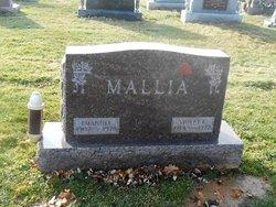 Violet L Mallia