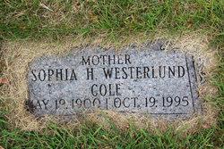 Sophia H Westerlund Cole