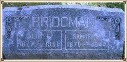 Samuel John Bridgman