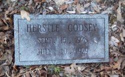 Herstel Godsey