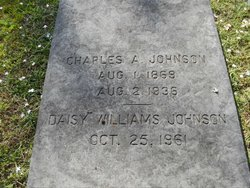 Daisy <I>Williams</I> Johnson