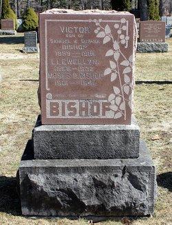 Victor Bishop