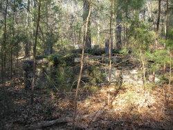 Willis Cemetery #1