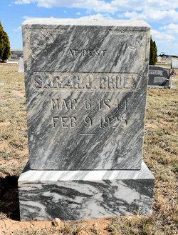Sarah J Cruey
