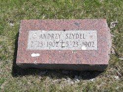 Andrzy Szydel