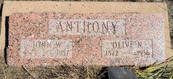 John W Anthony