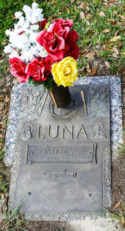 Maria A Luna