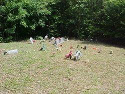 Crum Family Cemetery