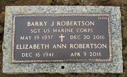 Elizabeth Ann Robertson