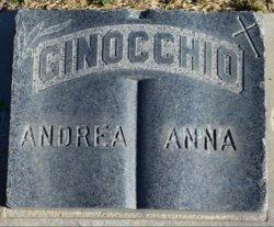 Anna Ginocchio