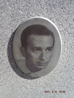 Tony D DeFino