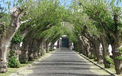 Cemiterio do Guadalupe