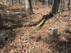 Haskins and Cheatham Burying Ground