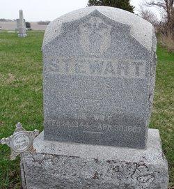 Nancy J <I>Boston</I> Stewart