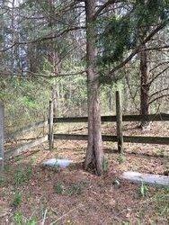 John Bailey Graveyard