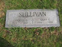 Anna Elizabeth Sullivan