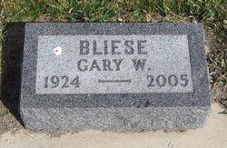 Gary Bliese